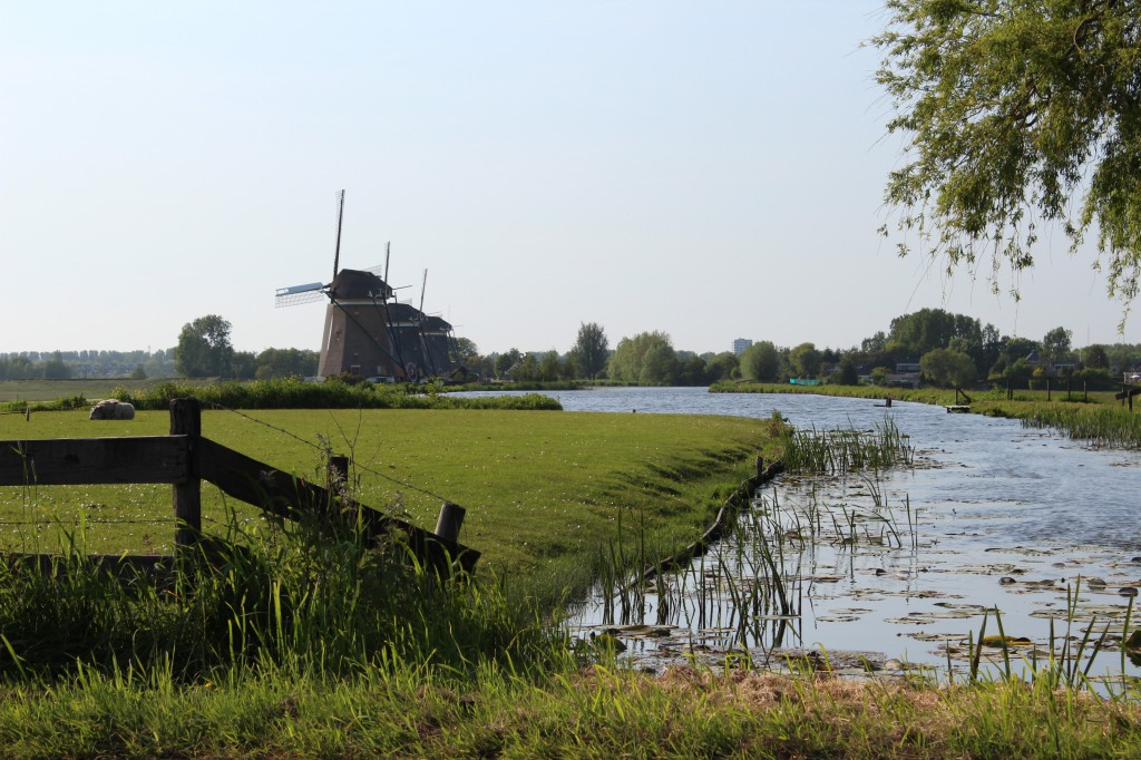 мельница символ нидерландов